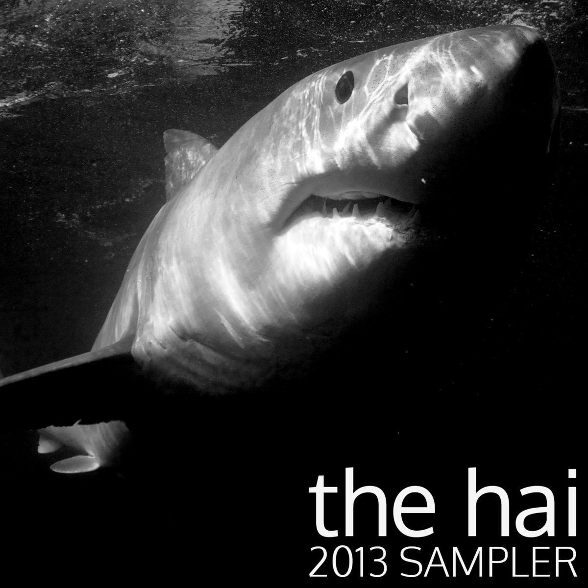 The Hai 2013 Sampler Album Art